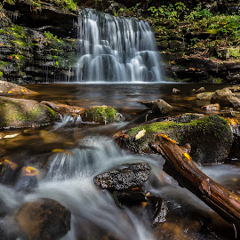 Ricketts Glen by László Gecző - Landscapes Waterscapes ( water, autumn, waterscape, creek, waterfall, , relax, tranquil, relaxing, tranquility )