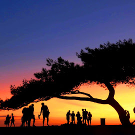 sunset  by Darko Čaleta - Landscapes Sunsets & Sunrises