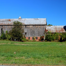 Old barn still standing by Janet Smothers - Buildings & Architecture Decaying & Abandoned