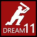 Pro Tips Dream 11 Prediction