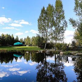 Yampa River Botanic Reflections by Bonnie Davidson - City,  Street & Park  City Parks ( water, clouds, bench, grass, green, art, umbrella, white, yampa river botinic gardens, colorado, reflections, landscape, sky, metal, blue, fall, trees, pond, steamboat springs )