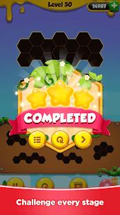 Hexa Puzzle - Block Puzzle Master