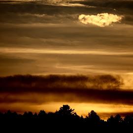 by Judy Laliberte - Novices Only Landscapes ( clouds, sky, sunset, dark, light )