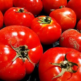 by Megi Šajn - Nature Up Close Gardens & Produce ( red, nature, light, nature up close, tomato )