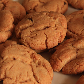 Peanut Butter Cookies by Lyle Hatch - Food & Drink Cooking & Baking ( ambient light, cracks, crevices, food, yummy, peanut butter cookies, baking, cookies, treat, dessert )