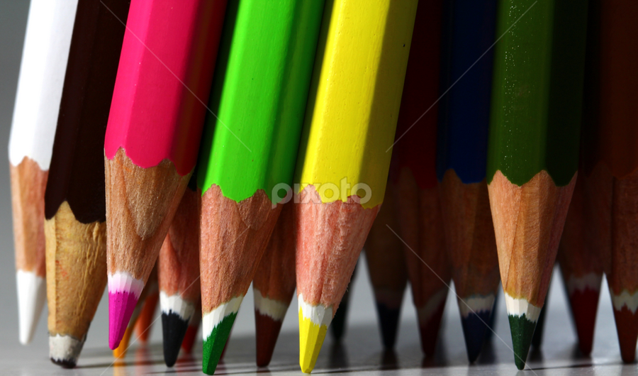 Pencils by Dipali S - Products & Objects Education Objects ( color, back, white background, stack, business, pencils )
