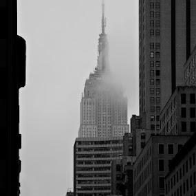 fog by Paolo Tangari - Buildings & Architecture Other Exteriors ( fog, skyscrapers, black & white, empire state building, new york, ny )
