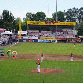 by Branimir Ficko - Sports & Fitness Baseball