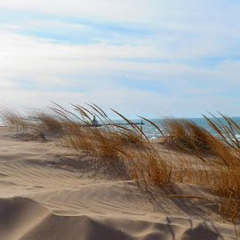 Lake Michigan by Kristine Smith - Landscapes Beaches