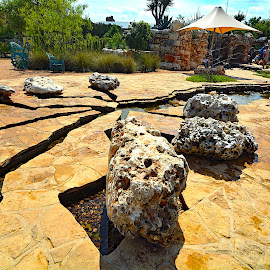 Exploring the Lady Bird Johnson Wildflower Center, Austin, TX by Victoria Eversole - Landscapes Travel ( austin, southwestern landscapes, lady bird johnson, rock gardens )