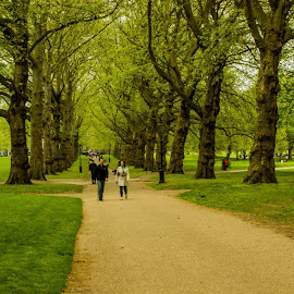 Green Park, London by Arindam Bera - City,  Street & Park  City Parks