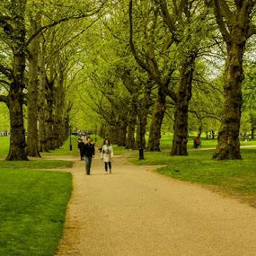 Green Park, London by Arindam Bera - City,  Street & Park  City Parks