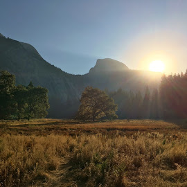 Yosemite Valley in the fall by Karen Coston - Landscapes Travel ( national park, fall colors, nature, half dome, autumn, yosemite, fall, fields )