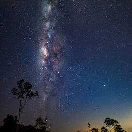 Milkyway Hunter by Lawrence Chung - Landscapes Starscapes ( milky way, star, starry, night sky, night, stars, milkway )