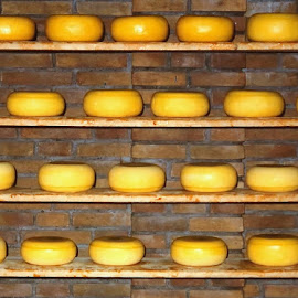 SAY 'CHEESE'! by Jody Frankel - Food & Drink Meats & Cheeses