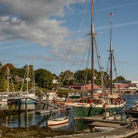 Schooners at Dock by Robert Coffey - Transportation Boats ( harbor, maine, boats, camden, ships, dock )