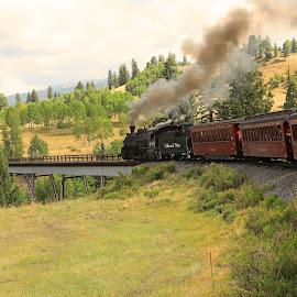 Narrow gauge train  by Ron Olivier - Landscapes Travel ( narrow gauge train )