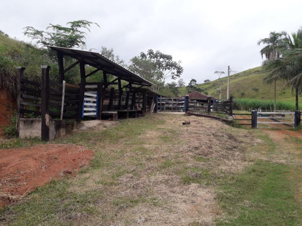 Fazenda / Sítio à venda em Werneck, Paraíba do Sul - RJ - Foto 6