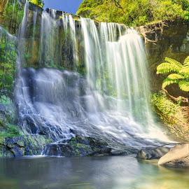 Mokoroa falls .... by Anupam Hatui - Landscapes Waterscapes ( waterscape, colors, falls, summer, mokoroa, scenic, new zealand )