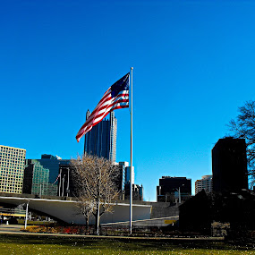 Pittsburgh with a flag in foreground  by Patrick Connolly - City,  Street & Park  Skylines