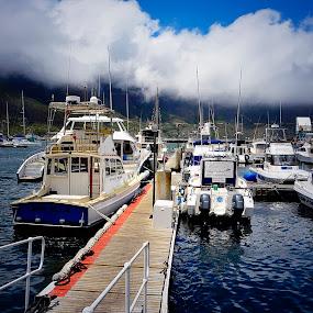 Cape Town Docks by Danette de Klerk - Transportation Boats ( harbor, harbour, boats, sea, ocean, docks, boat )
