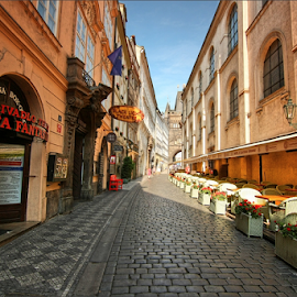 Královská cesta, Karlova ulice, Praha by Irena Brozova - City,  Street & Park  Street Scenes ( prague )