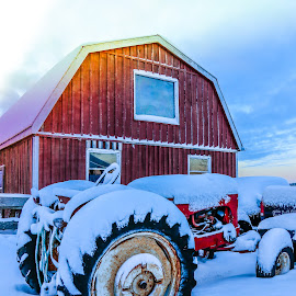 Buried Tractor by Susan Hill - Transportation Other ( winter, barn, snow, tractor )