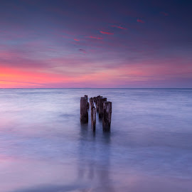 by Edward Kreis - Landscapes Waterscapes ( singhray filters, dawn, colors, daryl benson rgnd, maryland, north beach, chesapeake bay, long exposure, beach, sunrise, pilings )