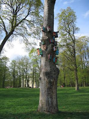 Tree near Verkiai Palace