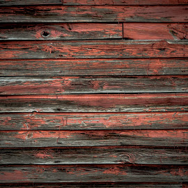 Barn Wall by Christy Stanford - Buildings & Architecture Other Exteriors ( old, wooden, red, barn, wood, wall )