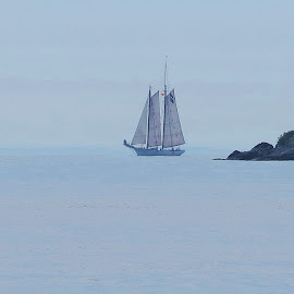 TALL SHIP by Gary Colwell - Transportation Boats ( tall ships,  )