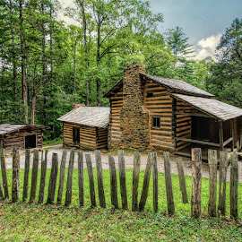 Old Homestead by Karen Carter Goforth - Buildings & Architecture Public & Historical ( country, grass, house, fence, trees, home,  )