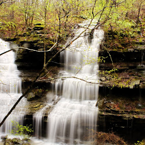 Twin Falls by Jamie Newton - Landscapes Waterscapes ( boston mountains, ozarks, water fall, spring )