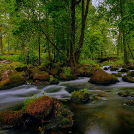 by Bojan Bilas - Landscapes Waterscapes ( forest, suomi, color, rapids, nature, fine art, woods, riverside, long exposure, scenic, beautiful, foliage, rocks, waterscape, river, travel, europe, landscape, finland )