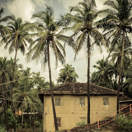 Typical Coastal Indian House by Saurabh Tamhankar - Buildings & Architecture Homes ( village, india, house, landscape, coastal )