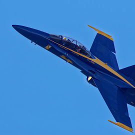 Blue Angels 846 by Raphael RaCcoon - Transportation Airplanes ( blue angels )