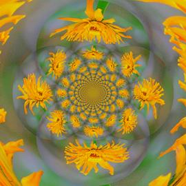 by Darrell Tenpenny - Digital Art Abstract