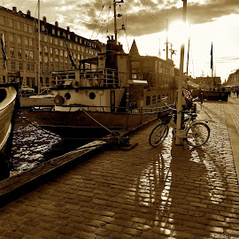 Copenhagen Evening by Timothy Carney - City,  Street & Park  Historic Districts ( copenhagen, sepia, cobblestones, sidewalk, bicycle )