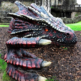 Dragon!!! by Helen Roberts - Artistic Objects Other Objects