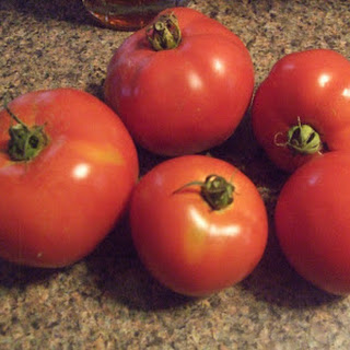 Salsa Dip Fresh Tomatoes Recipes