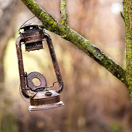 Lightless by Daniel Proca - Artistic Objects Antiques ( countryside, lightless, old, lamp, wet, artistic objects, rust, antique, rain )