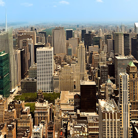 by Jan Gorzynik - City,  Street & Park  Skylines ( skyline, metropolis, america, skyscrapers, metropolitan, states, nyc, architecture, cityscape, travel, apartments, usa, panorama, city, lights, towers, buildings, york, east, district, rises, downtown, sightseeing, site, office, financial, united, twilight, tourism, manhattan, scenic, dusk, urban, landmark, new, scene, architectural, night, view, bridge, high, panoramic, brooklyn, river )