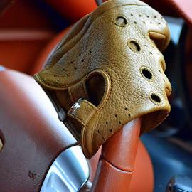 Glove by Alicia Lara - Transportation Automobiles (  )