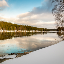 Early Morning Reflection by Griff Johnson - Landscapes Waterscapes ( kolasen, sweden, jämtlands, reflection, sky, winter, blue, snow, trees, forest, river )