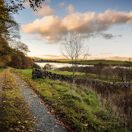 Loch Kindar by James Johnstone - Landscapes Waterscapes ( autumn, kindar, path, trees, lake, loch, new abbey )