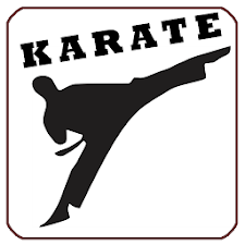 Karate Fight Training Lessons