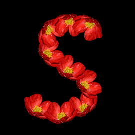 Alphabet - S by Dipali S - Typography Single Letters ( optical, optics, illustration, motivation, type, decor, inspiration, nature, calligraphy, card, place, flower, template, orange, element, text, creative, letter, font, art, label, calligraphic, sign, frame, poster, word, typography, letters, headline, graphic, ornate, decorative, captioned, title, words, papaver, quote, inscription, classic, note, banner, typographic, abstract, icon, vintage, decoration, advertisement, poppy, photo, message, motivational, s, typo, background, artistic, design )