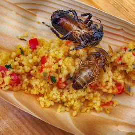 Cockroach and couscous by Michal Fokt - Food & Drink Plated Food ( food, cockroach )