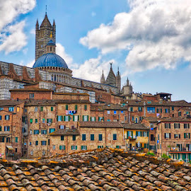 Siena, Tuscany, Italy by Ann J. Sagel - City,  Street & Park  Historic Districts ( bell tower, siena, tuscany, medieval, ann j. sagel, italy )