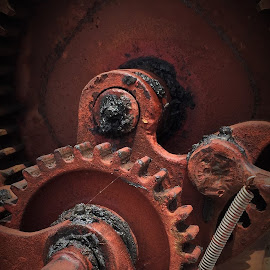 Gear and Spring by Lorna Littrell - Artistic Objects Industrial Objects ( orange, industrial, mechanical, springs, gears, machines,  )